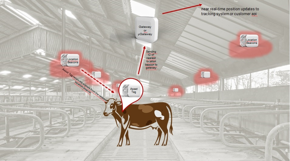 safectory Tracking for agricultural livestock farming